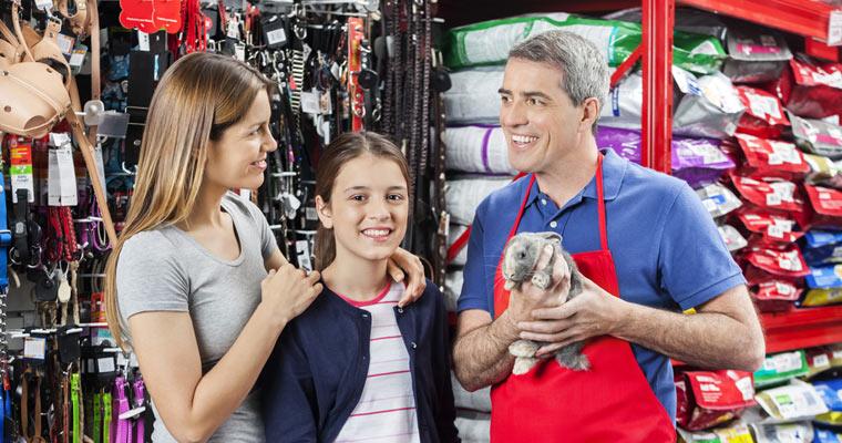 pet-store-rabbit
