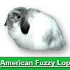 Navigate to american fuzzy lop page