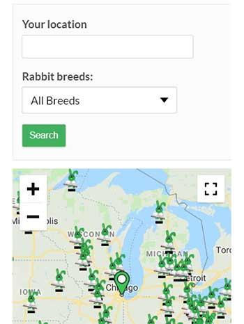 Navigate to rabbit breeders directory