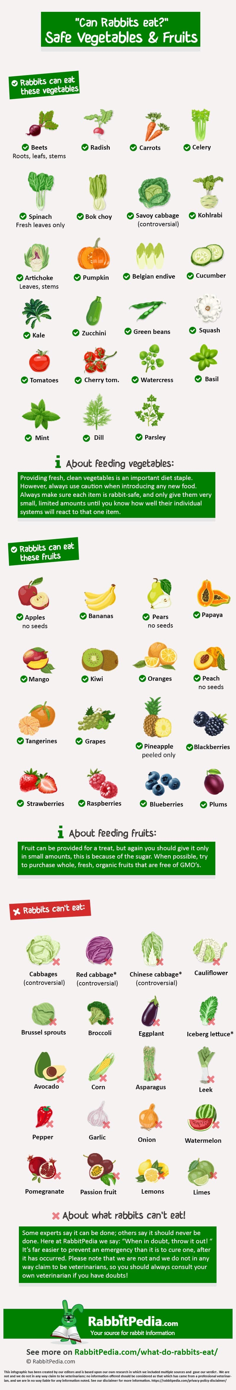 Safe vegetables and fruits for rabbits infographic